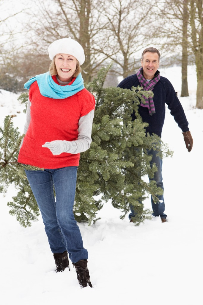 Couple choosing xmas tree_46943053